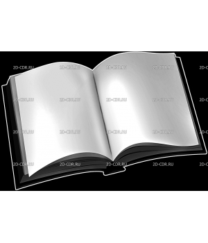 Книга (2)