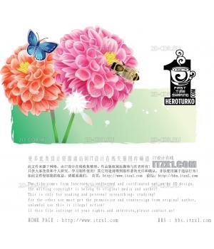 Цветы (118)